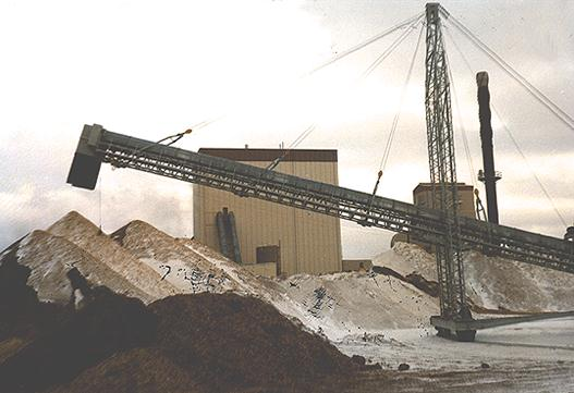 Steep Incline Conveyor: Wood Chips to Power Generation