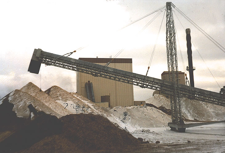 Wood Chips to Power Generation