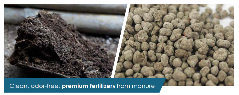 Clean, odor-free, premium fertilizers from manure