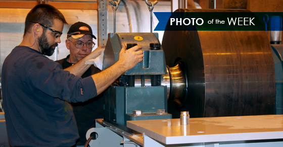 Trunnion Wheel Assembly