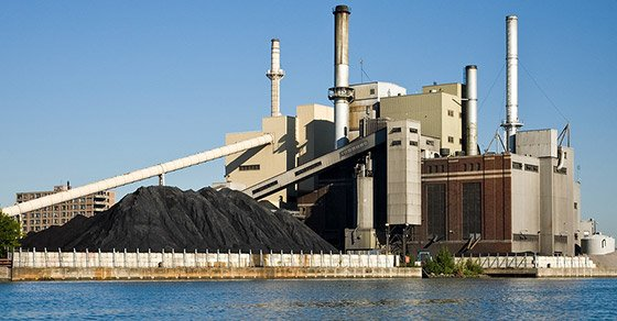Biocoal from Biomass: An Emerging Opportunity in Renewable Energy