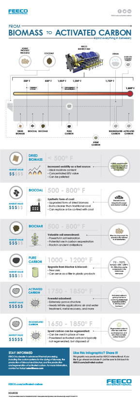 Biomass to Activated Carbon Infographic