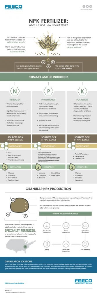 NPK Fertilizer: What is it and How Does it Work (Infographic)