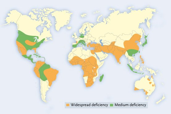 Global Zinc Deficiency Map