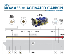 From Biomass to Activated Carbon Infographic
