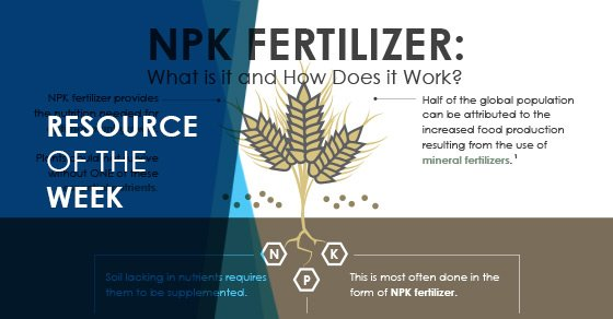 Resource of the Week: NPK Fertilizer (Fertiliser) Infographic