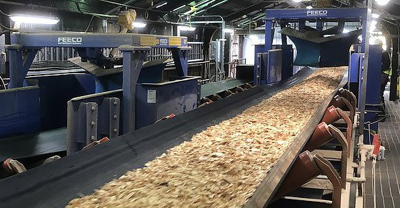 Wood Chip Handling System, Wood Chip Conveyors