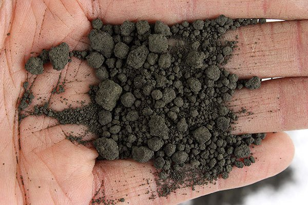 Agglomerates After Conditioning in a Pugmill